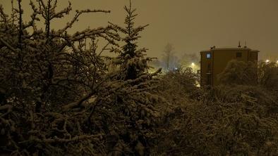 Nocny  śnieg