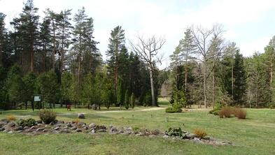 Arboretum w Kopnej Górze