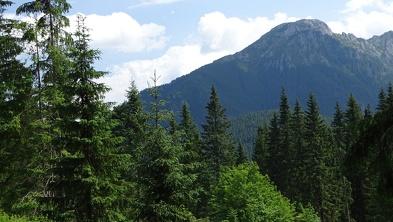 Widok z Doliny Chochołowskiej