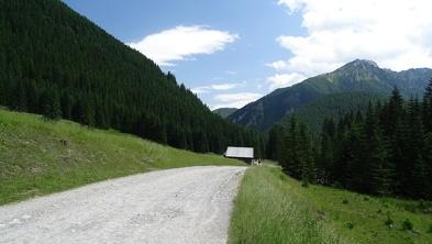 Szlak w Dolinie Chochołowskiej