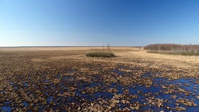 Bagno Ławki