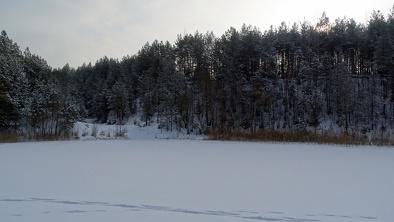 Zima w Ogrodniczkach